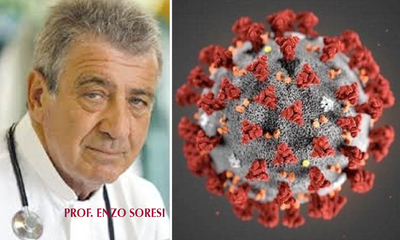 CORONA VIRUS, Italian Pulmonologist: «Herbal Medicine May Help Prevent and Treat Virus»