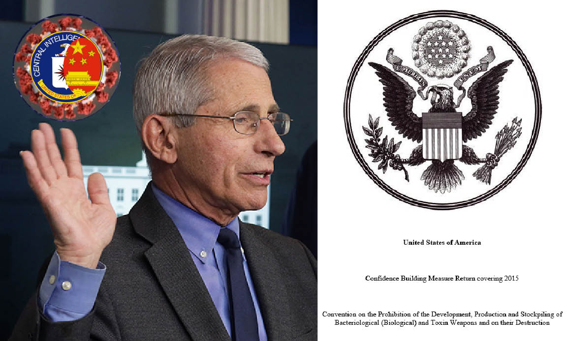 WUHAN-GATES – 7. Bio-Weapons Dossier. Pentagon & Fauci 28 Us Labs' Secrets. Dangerous Tests with CoronaVirus