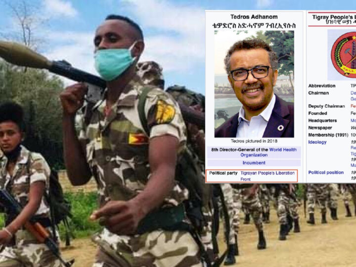 """TEDROS IS A CRIMINAL"". Ethiopia's Army Blames WHO Boss who denies supplying Weapons to TPLF Communist-Islamic rebels. Al Qaeda Spectre in Horn of Africa"