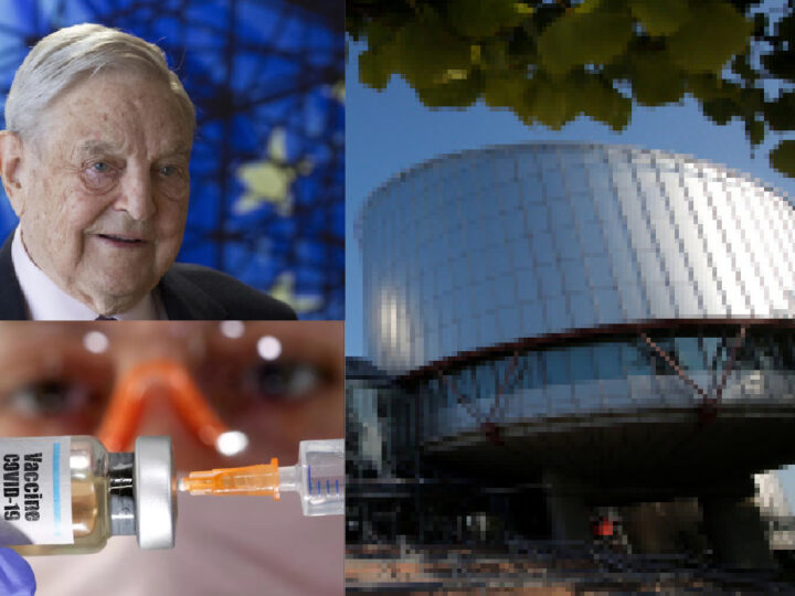 """Mandatory vaccines are Democratic"" Ruled European Court of Human Rights linked to Soros"