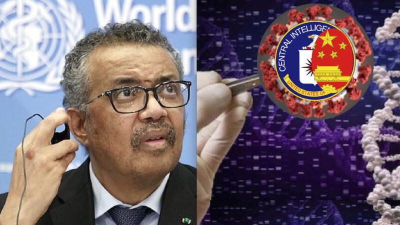 WUHAN-GATES – 42. New Scandal on WHO Covid-19 Task-Force for Wuhan: Chosen Scientists Deniers of the Laboratory Virus Theory