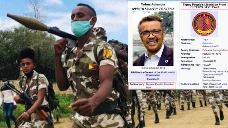 """""""TEDROS E' UN CRIMINALE"""". Dall'Etiopia accuse al direttore OMS che nega di procurare armi ai ribelli Comunisti-Islamici TPLF. Incubo Al Qaeda nel Corno d'Africa"""