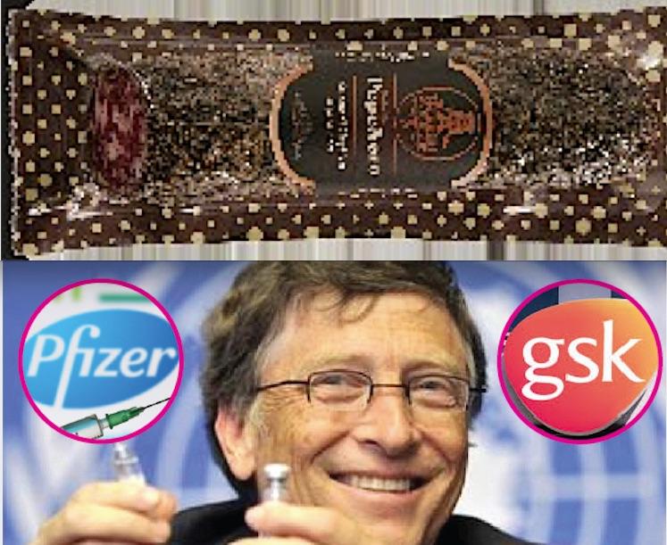 ALLARME SALMONELLA NEL CIBO: Ma GSK & Gates lavorano già al Vaccino…