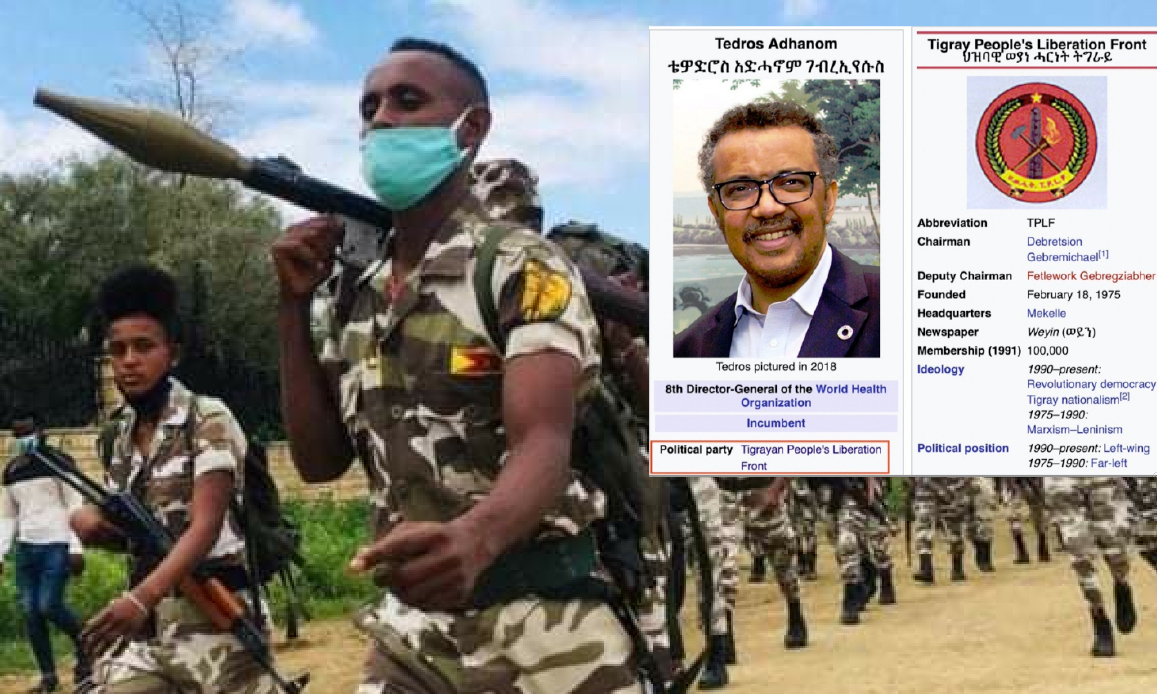 """""""TEDROS IS A CRIMINAL"""". Ethiopia's Army Blames WHO Boss who denies supplying Weapons to TPLF Communist-Islamic rebels. Al Qaeda Spectre in Horn of Africa"""