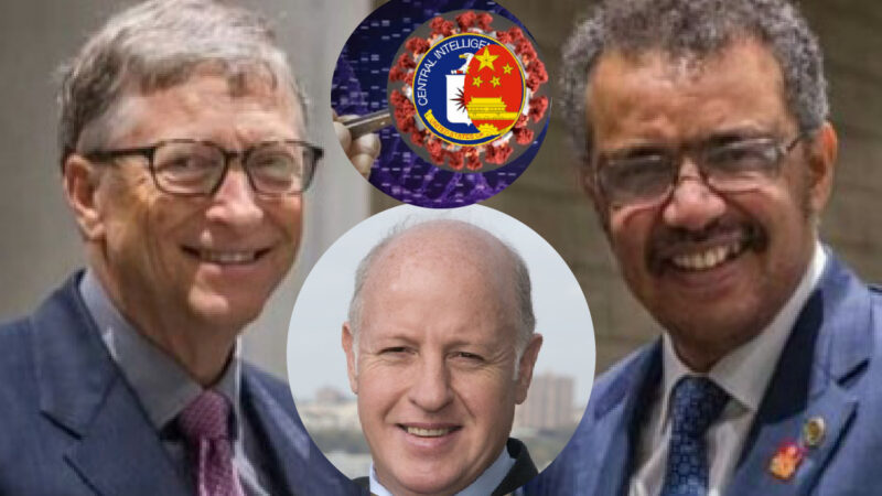 WUHAN-GATES – 27. Scandal in SARS-Cov-2 Inquiry! Inside WHO Task-Force a Gates' Partner who funded in Wuhan & US Chimera Viruses Tests