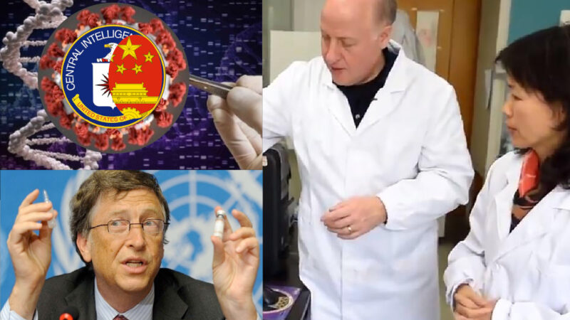 WUHAN-GATES – 31. SARS-2: Lies & Ties among Us-China Scientists in Gates' Shade disclosed by Daily Mail and Die Welt