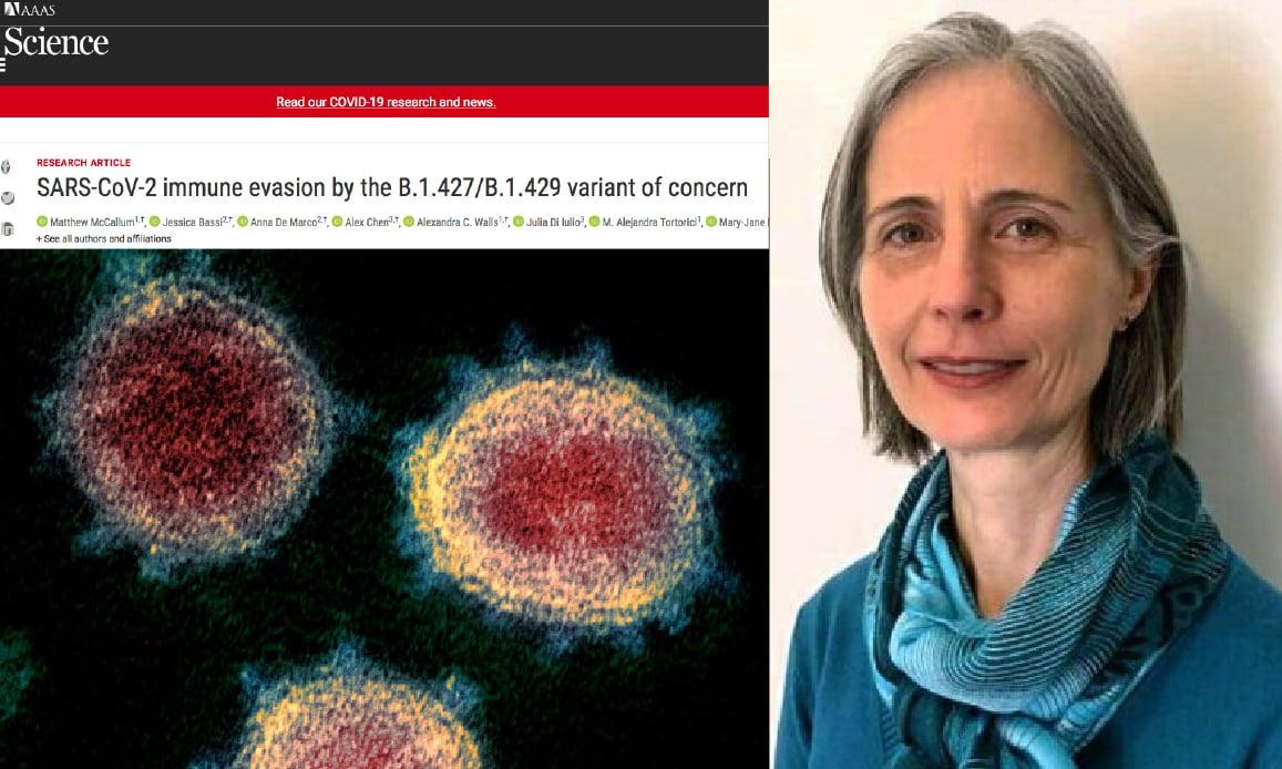 Covid-19, Epsilon Californian Mutation Resists to Vaccines. Delta's Massacre in Russia! As Sars-2 Bio-Weapons…