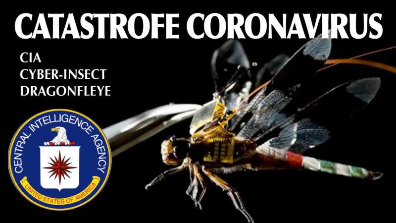 CATASTROFE DA ARMA BIOGENETICA. Gli 007: «Diffusa coi nano-droni CIA» e Cyber-libellule. Strage in Iran. SOS Italia