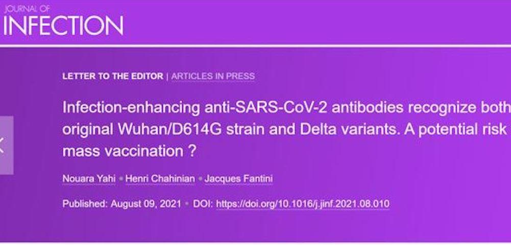 ALLARME RISCHIO ADE PER I VACCINATI. Sieri antiCovid aumentano l'Infezione da Variante Delta anziché Evitarla