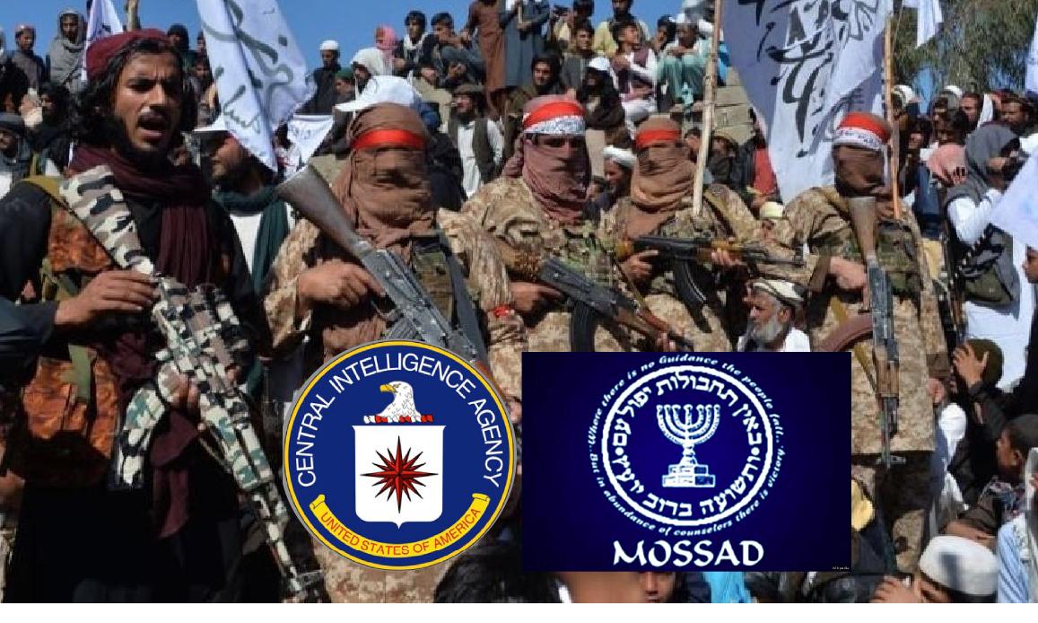 CIA & MOSSAD NEL NUOVO EMIRATO DEL TERRORISMO ISLAMICO. A Kabul Allarme Alleanze tra Talebani, Al Qaida, ISIS e Jihadisti dei Fratelli Musulmani